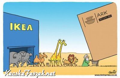 Noé és az IKEA
