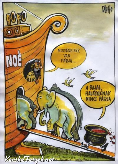 Bajai halászlé