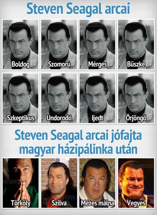 Steven Seagal arcai