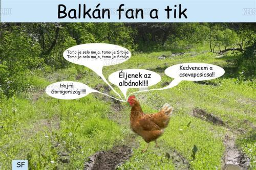 Balkán fan a tik