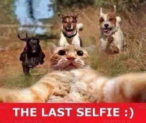 Az utols� selfie