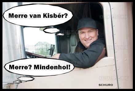 Kisb�r