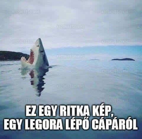 Cápa és a Lego